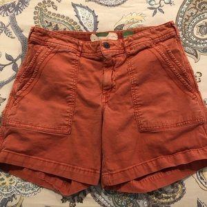 Anthropologie Wanderer Utility Shorts